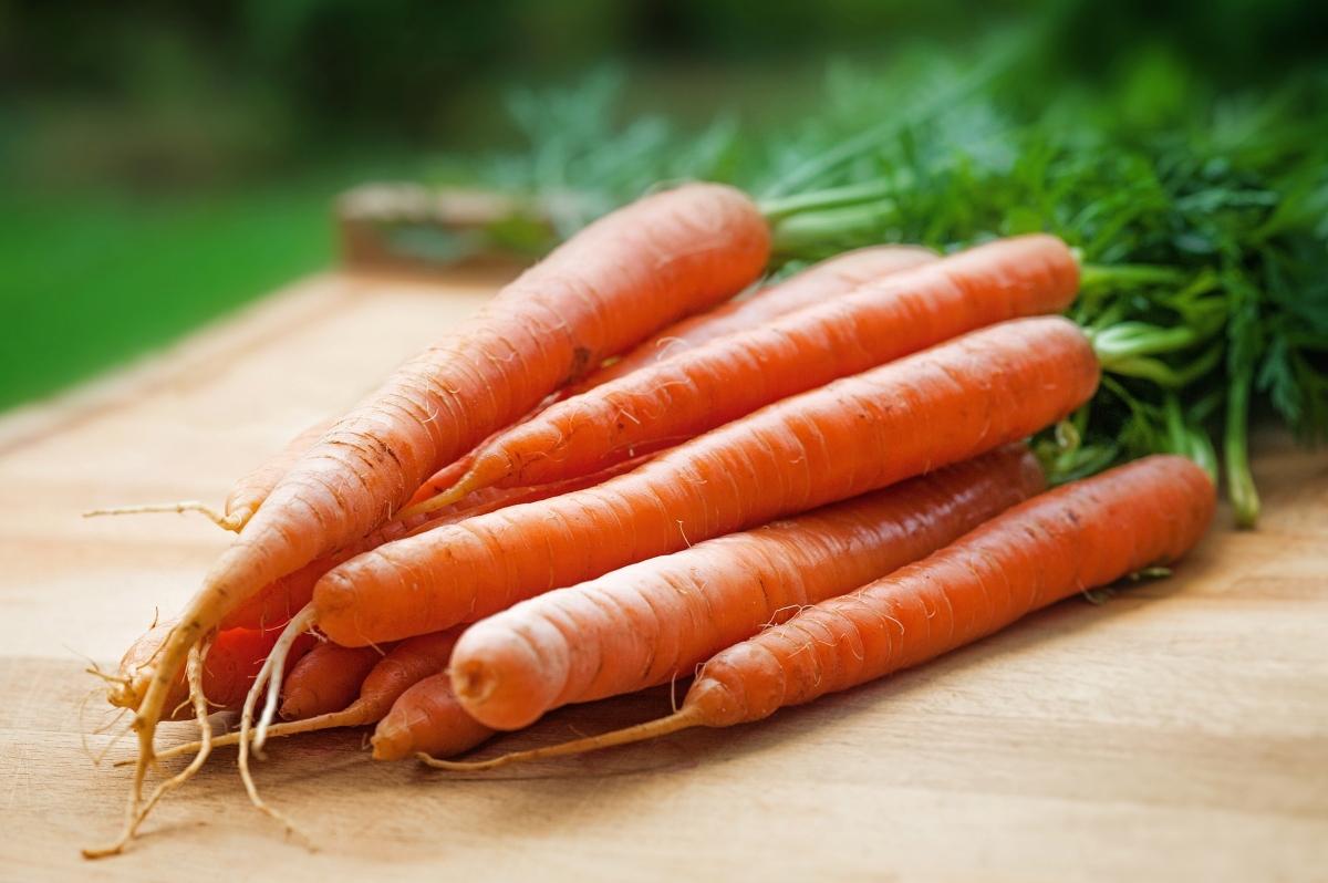 Receta zanahoria