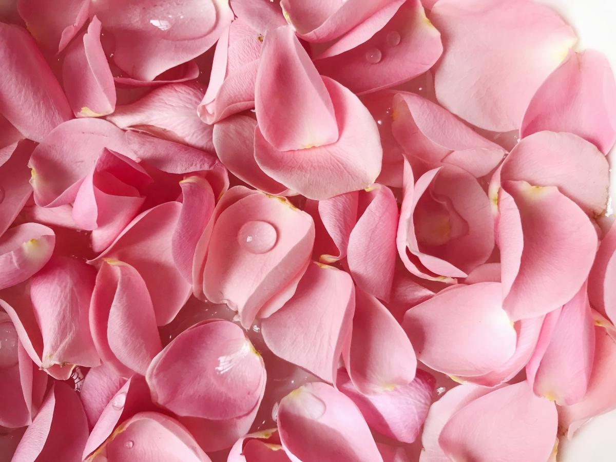 Receta de agua de rosas y arcilla blanca