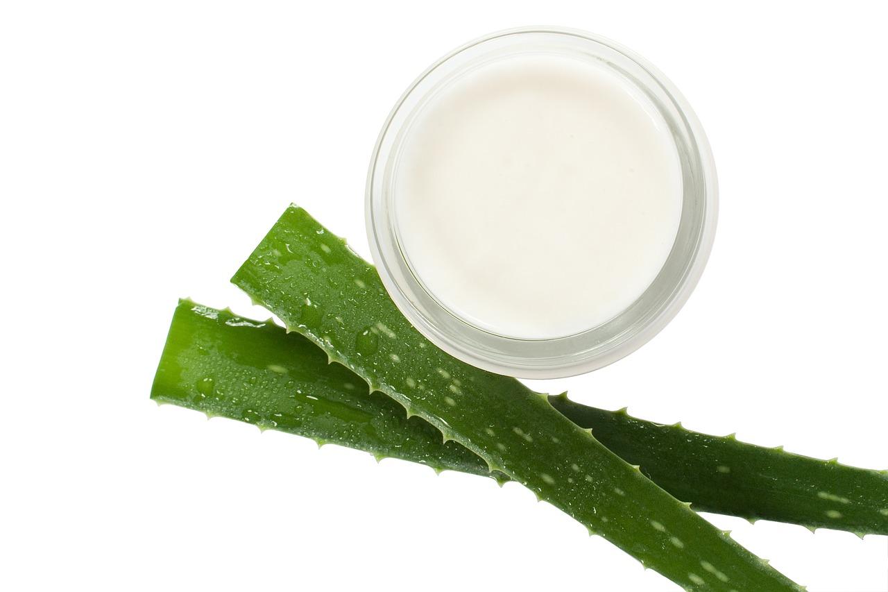 Cómo Hacer Una Crema De Aloe Vera Casera
